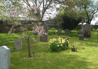 Living churchyard 2