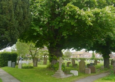 Living churchyard 5