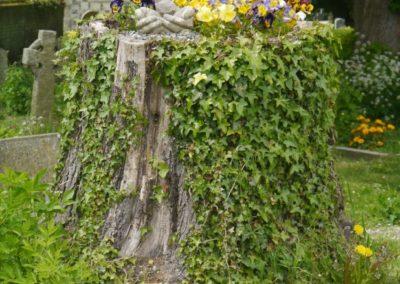 Living churchyard 6