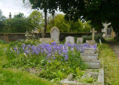 Living churchyard 7