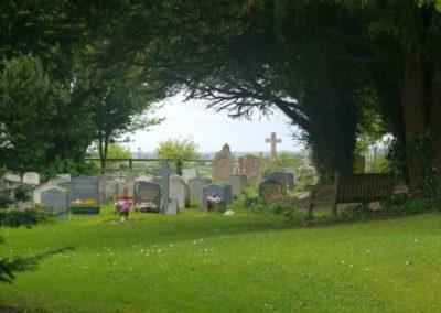 Living churchyard 9